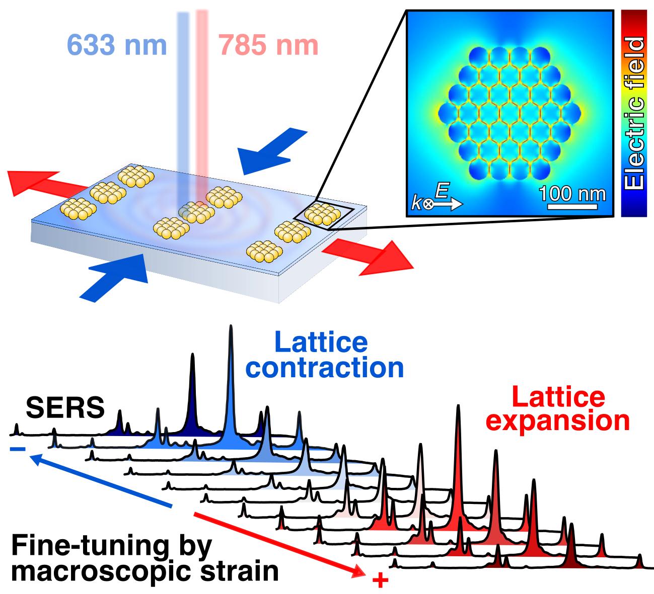 Mechanically Tunable Lattice-Plasmon Resonances by Templated Self-Assembled Superlattices for Multi-Wavelength Surface-Enhanced Raman Spectroscopy